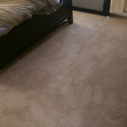 carpet cleaners near me reviews