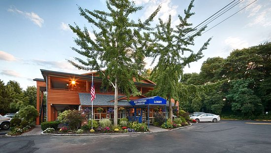 best western albany ny reviews
